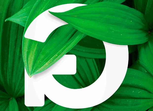 Flash Talk: Empresas estão mais alinhadas com a sustentabilidade