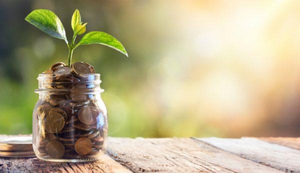 Cinco dicas de poupança para 2019